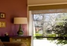 Allens Rivulet Double roller blinds 2